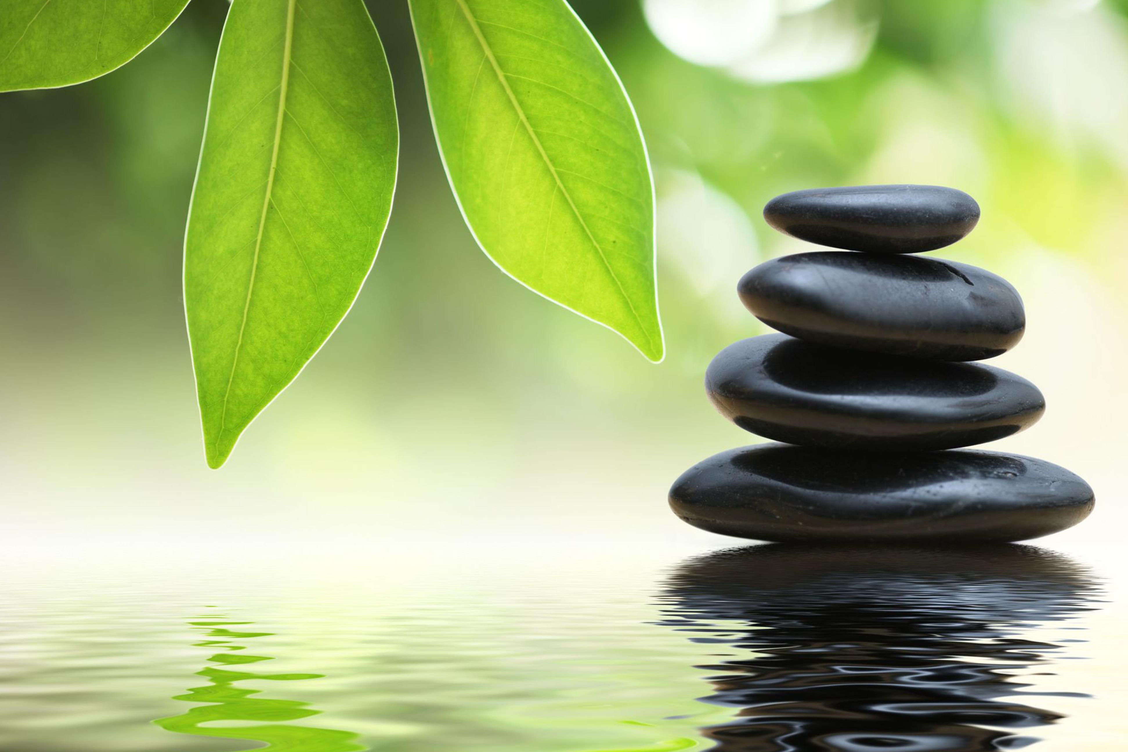 Massage Therapy & Infrared Sauna in Charleston, SC